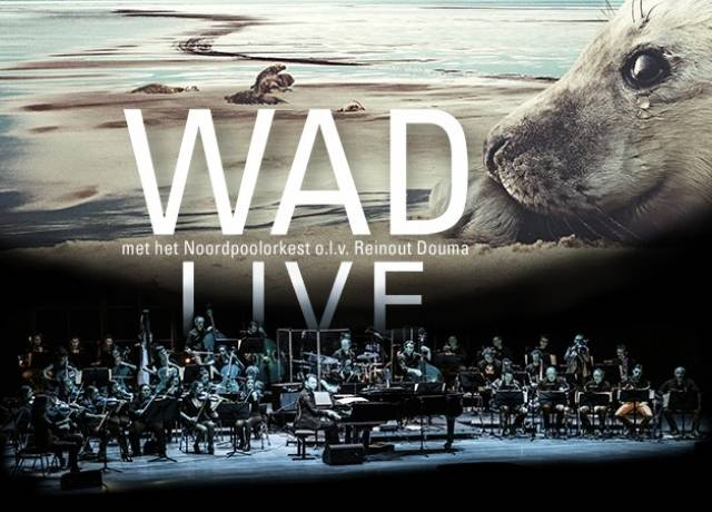 WAD Live